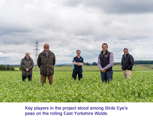 birds eye Cover-Crops captioned copy