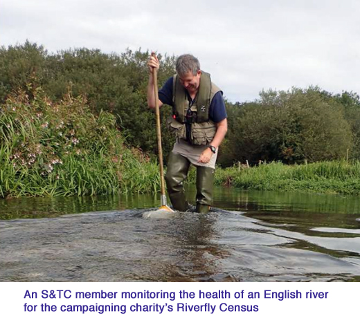 southern water big fine riverfly census