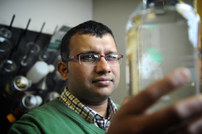 Chance discovery of bacteria could shake up energy use of wastewater treatment
