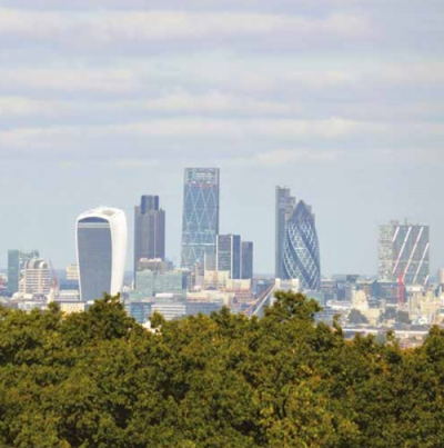 London's trees given a hard cash value