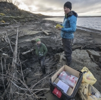 Microbes create vicious cycle of climate change as permafrost thaws