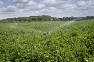 Record hot weather confirms practical water plans needed for farm and greenhouse