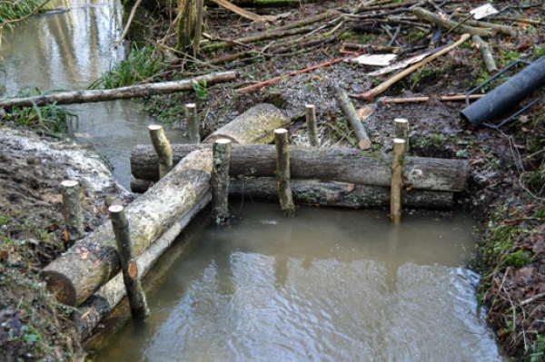 Naturally designed 'leaky dams' prevent flooding
